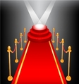 Empty stage with red carpet vector image