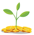Tree Finance coin cartoon vector image