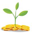 Tree Finance coin cartoon vector image