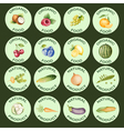 Watercolor set of icons vector image