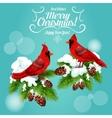Christmas card with cardinal bird on pine tree vector image