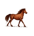 Horse or stallion mustang running sketch vector image
