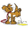 Dog peeing vector image