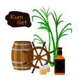 rum barrel bottle sugar cane helm shots in flat vector image