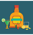 tequila decoration vector image vector image