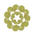 green floral mandala pattern decoration vector image