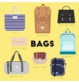 Different kinds of bags and purses vector image