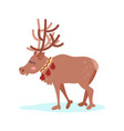 reindeer character colorful vector image