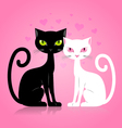 Black and white cat vector image