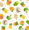 Citrus coconut and ginger seamless pattern vector image