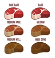Degrees of Steak Doneness Icons Set vector image