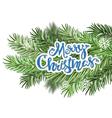 Christmas greeting and Christmas branches vector image