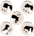 Dog and cat veterinary icons vector image