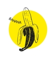 Hand drawn banana vector image