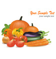 big colorful vegetables vector image vector image