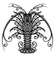 Sea Spiny Lobster vector image