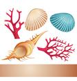 Summer sea elements vector image