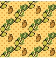 Health and Nature Collection Argan tree vector image vector image