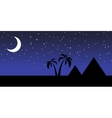 egypt at night vector image