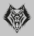 fierce wolf face vector image