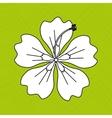 Hawaiian flower design vector image