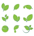 Green leaves leaf symbol icon set vector image vector image