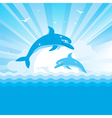 Dolphins jumping sea vector image
