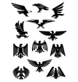 Eagle or falcon aquila or hawk heraldic badge vector image