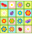 Flowers butterflies and ladybugs vector image