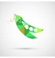 Green Pea of fresh green peas pod vector image
