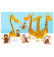 safari wild animal characters cartoon vector image
