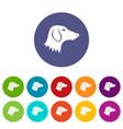 dachshund dog set icons vector image