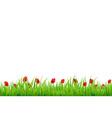 Red Tulip Border vector image