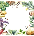 Watercolor collection of fresh herbs and spices vector image