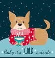 winter greeting card with cute dog vector image