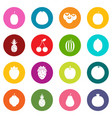 fruit icons many colors set vector image