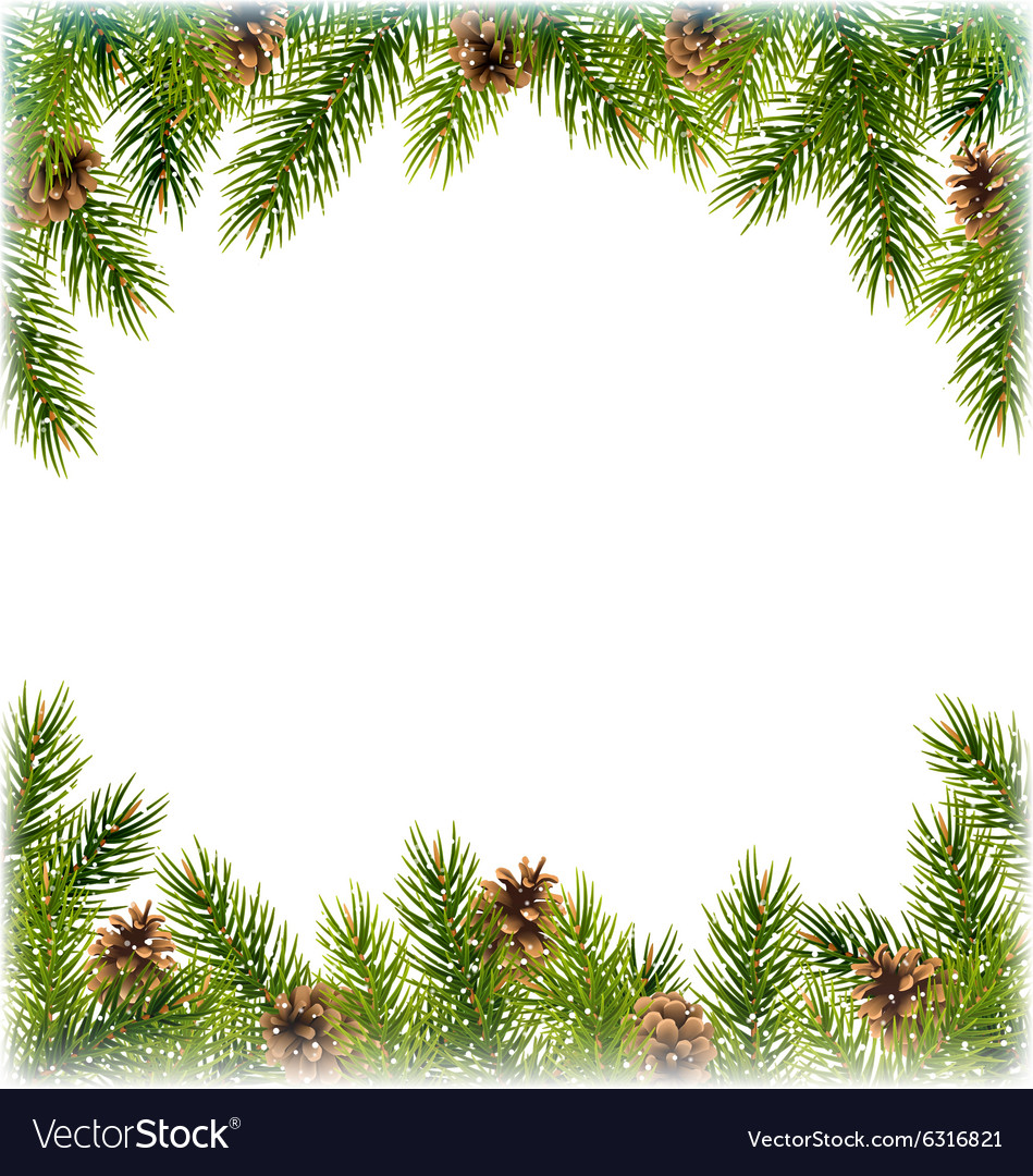 Green christmas tree pine branches with pinecones vector