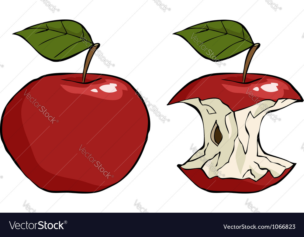 Apple and apple core vector