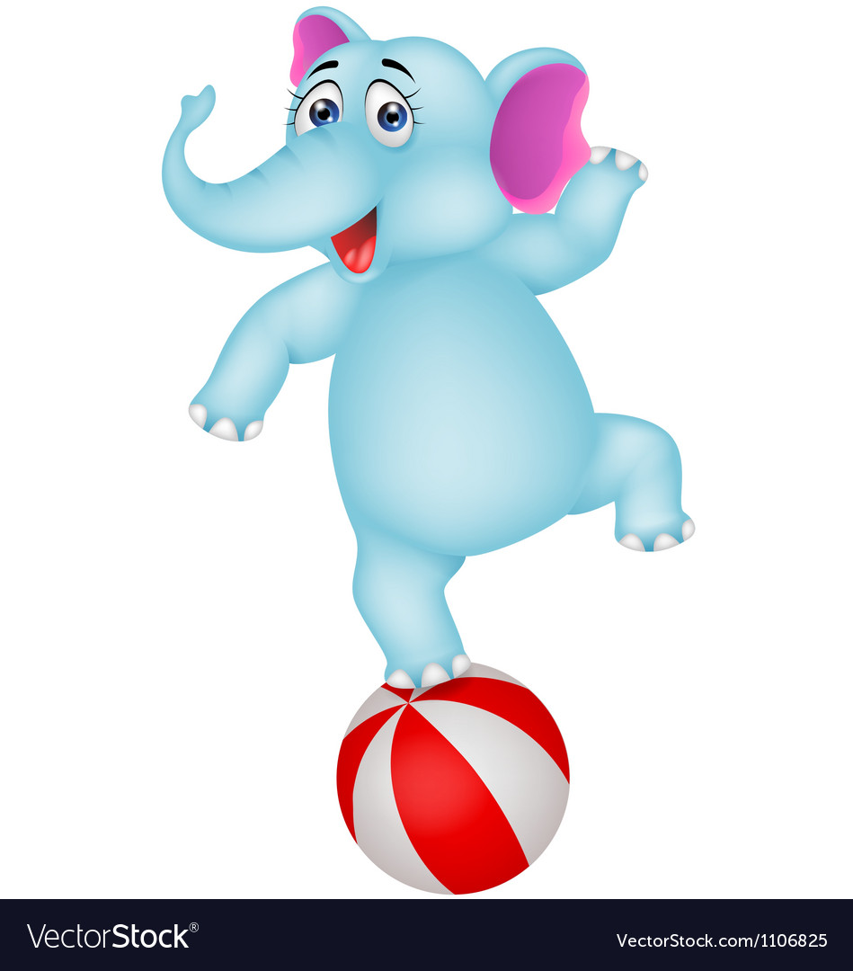 Elephant cartoon on ball vector