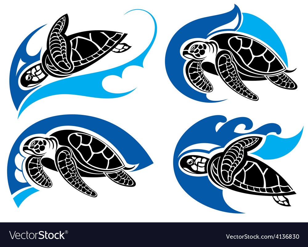 Sea turtles vector
