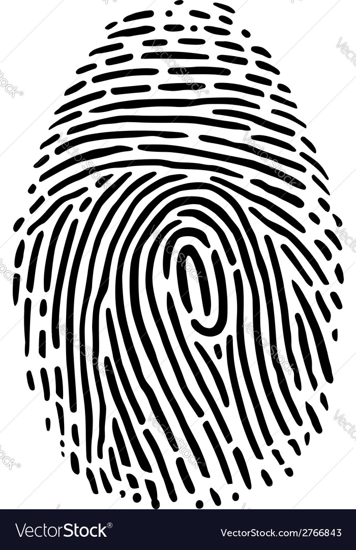 Fingerprint vector