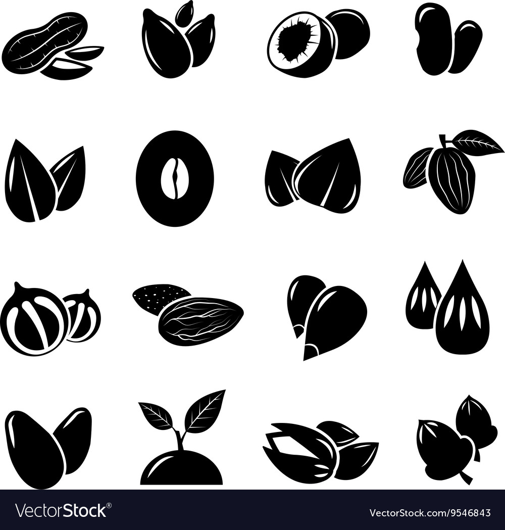 Nut and seed black icon vector