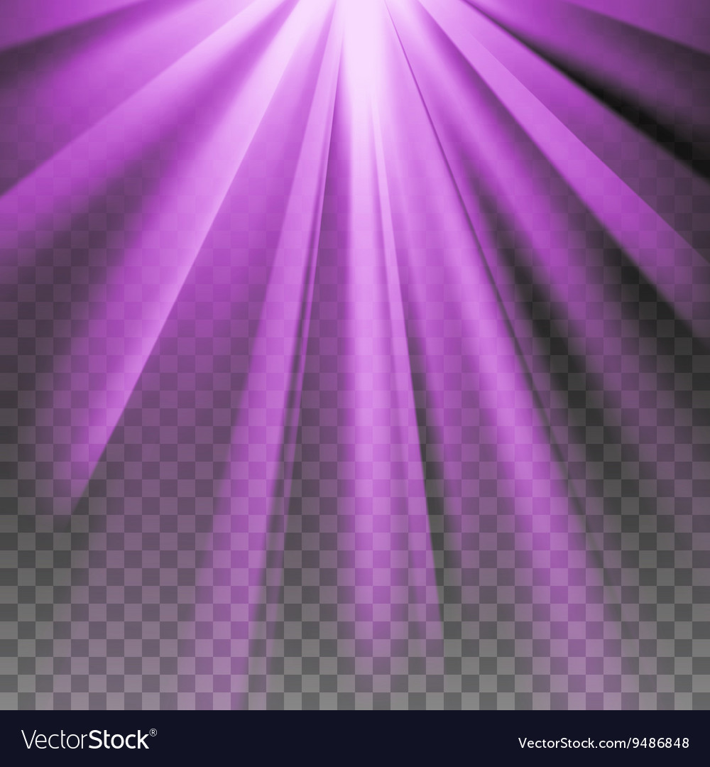 Purple flare rays vector