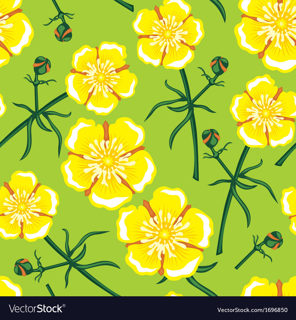 Buttercup seamless vector