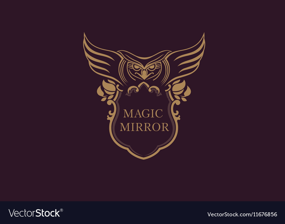 Creative emblem of the magic mirror with an owl vector