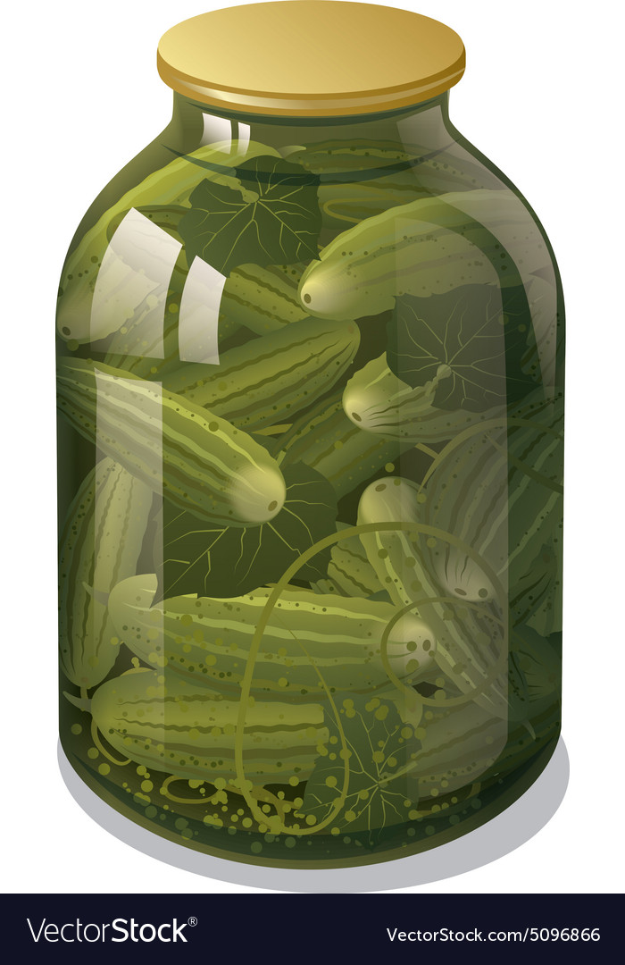 Canned cucumbers vector