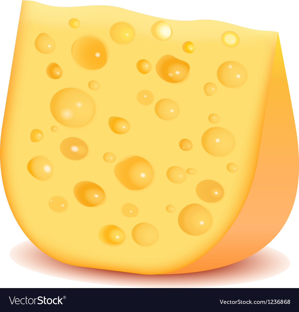Cheese isolated on white vector