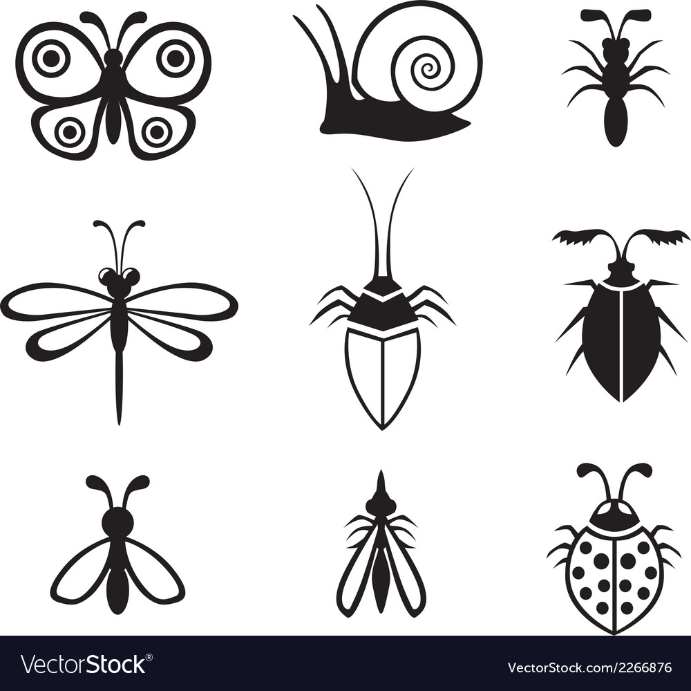 Insect set vector