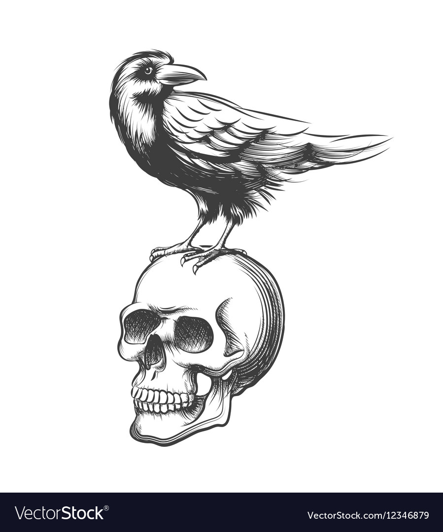 Evil crow hand drawn black vector