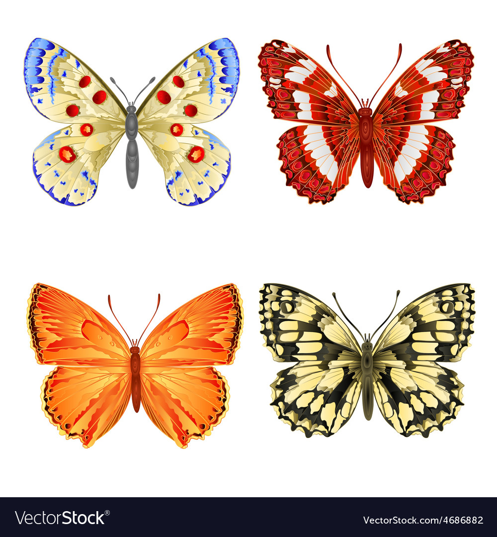 Various butterflies mountain meadow and forest vector